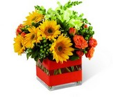 Perfect Sun Bouquet from Arthur Pfeil Smart Flowers in San Antonio, TX